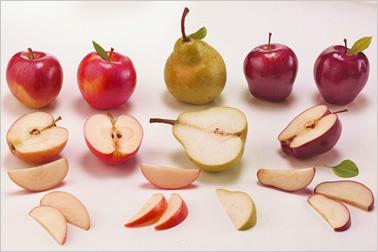 Real Fruit Ingredients